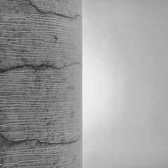 concrete.and.sun (hoffi99) Tags: urban pattern minimalistic sun concrete abstact hoffi99