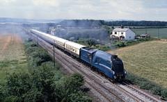 LNER 4468 Mallard at Seamer. Jul'86. (David Christie 14) Tags: seamar lnera4 mallard