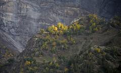 Autumn in the Chandra Valley, India 2016 (reurinkjan) Tags: india 2016 ©janreurink himachalpradesh spiti kinaur ladakh kargil jammuandkashmir chandravalley himalayamountains sunrise himalayamtrange himalayas landscapepicture landscape landscapescenery mountainlandscape
