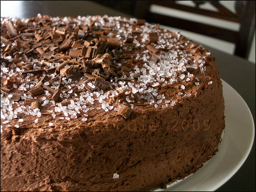 chocolateoverloadcakecloseu