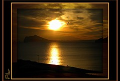 Sueños (peltodoris) Tags: sunset naturaleza bird sol atardecer mar agua mediterraneo paisaje ave cielo nubes crepusculo ocaso detalles ohhh nwn estremità peltodoris natureselegantshots travelsofhomerodyssey