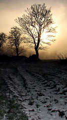 Snow Tracks (Mindful Youth) Tags: christmas blue winter sunset sky sun mist snow tractor cold tree ice beautiful field grass silhouette yellow fog clouds composition landscape countryside december ditch background horizon hill tracks freezing photograph hedge chilly atmospheric tyre foreground countrylandscapes