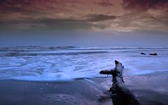 feel the jiwa.. softly II (:: tujuhjiwa / sevensouls ::) Tags: sea seascape beach water photoshop ads landscape photography for photo sand nikon asia southeastasia soft sale  laut stock stocks crop malaysia gradient beaches seashore johor allrightsreserved pantai pasir 2010 adverts basah johore cs3 shor d90 tujuhjiwa