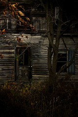 invitation only (eflon) Tags: door windows house fall abandoned leaves wooden haunted spooky siding rustling