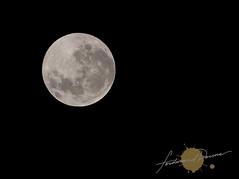 Blue Moon 2009/2010 12:22am
