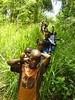 Barbados Hiking [Dsc00569]