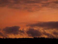 (CG's Photos) Tags: sunrise sonnenuntergang hardheim
