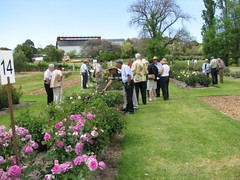 National Rose Trial Garden