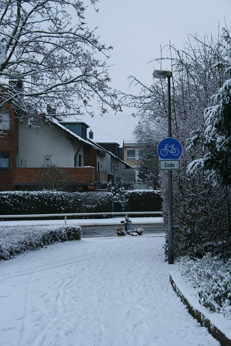 Unfallkreuz in Brühl