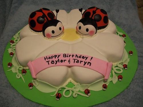 twin ladybug cake