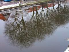 reflectie in de Vliet (Gerard Stolk (vers le Carme)) Tags: delft vliet reflectie dooi ijsschotsen oostsingel