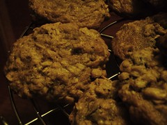 19 - quaker oats oatmeal raisin cookie