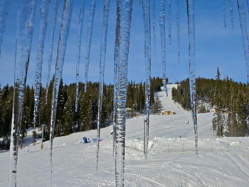 Winter Wine Festival @ Sun Peaks Resort
