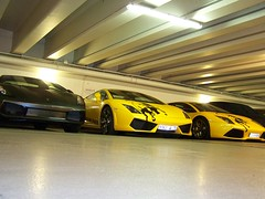 Lamborghini Trio (Damors) Tags: paris france car yellow frankreich garage parking basement royal bull exotic gelb tc lp trio avenue lamborghini coupe morten kk gallardo tiefgarage combo murcielago concepts parkhaus 560 640 stier foch 5604 lp640 carparazzi autogespot lp5604 exoticsonroad autoinformatief streetexotics schwend