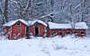 Winter Weighs Upon Us (Don Iannone) Tags: trees snow interestingness nikon explore snowytrees winterscene oldfarmbuildings northeastohio imagepoetry poeticimage winterphoto amishcountryohio geaugacountyohio doniannone greatercleveland doniannonephotography nikond2xcamera visualadvantagephotography snowyfarmfield winterhaslastedtoolong poembyjameskavanaugh