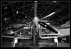 FISHER P-75A (Award Photography) Tags: ohio test monochrome museum airplane nikon fighter display aircraft wwii research fisher static usaf development hanger prop dayton escort 2010 afb d40 p75a writepatterson
