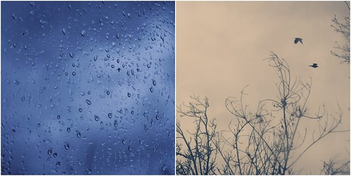 {37:365}  Let's be in love