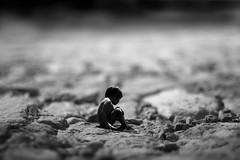 C'è vita su Marte (luce_eee) Tags: life baby fantasia portfolio terra materia marte newho selm germoglio illusioni canon400d fotografichemanipolazioni vitachenasce wwwrinaciampolillocom