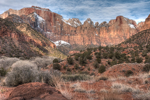 Morning, Zion National Park