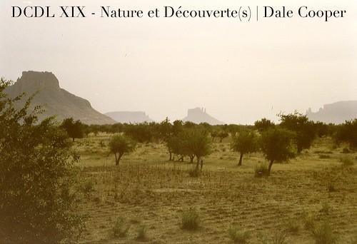 DCDLl XIX | Dale Cooper