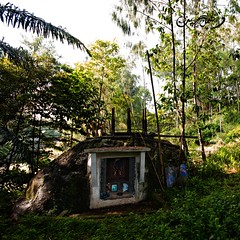 Boulder grave (QooL / بنت شمس الدين) Tags: travel indonesia sulawesi qool tanatoraja sulsel qoolens