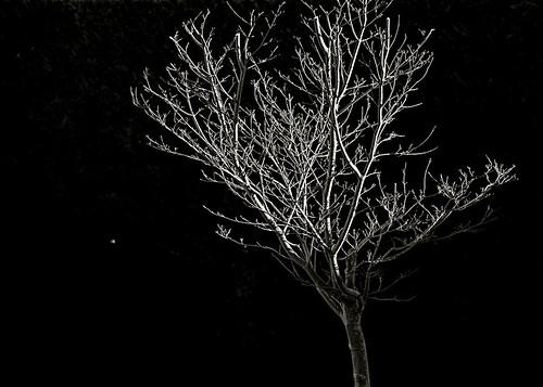 con un poco de luz by eMecHe
