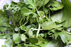 green salad (Mandy73 - The Photographer Blog) Tags: food green salad rocket spinach watercress greensalad saladleaves dpschallenge dpsgreen