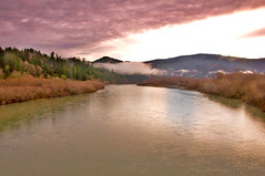 Klamath River (kmanohar) Tags: california ca northerncalifornia worldheritagesite indians highway101 nativeamericans redwoodnationalpark delnortecounty us101 klamath ushighway101 northerncaliforniacoast temperaterainforest redwoodpark klamathriver redwoodcoast yurok pacificrainforest klamathcalifornia klamathca california101 internationalbiospherereserve californiareservation redwoodpreserve californiariver yurokindianreservation yurokindian pacificriver californiaindians californiarainforest pacificcoastriver delnortecalifornia delnorteca northwestrainforest humboldtcountyline delnortecountyline yuroknativeamericans nativeamericansofcalifornia redwoodreserve californiaindianreservation northerncaliforniariver westcoastriver