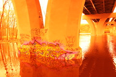 ergot ({ tcb }) Tags: bridge 6 color reflection water minnesota concrete graffiti hand flood spraypaint beams ergot 6finger springflooding minnesotaflood2010