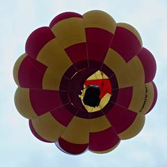 Hot Air Balloon Fiesta 2010 (10) (QooL / بنت شمس الدين) Tags: hotair balloon putrajaya qool 5133 qoolens fiesta2010