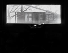 (f e r e l m a f e) Tags: ventana jazz cristal frio dentro casita afuera vaho finaldelinvierno encuntrameentussueos duroinvierno