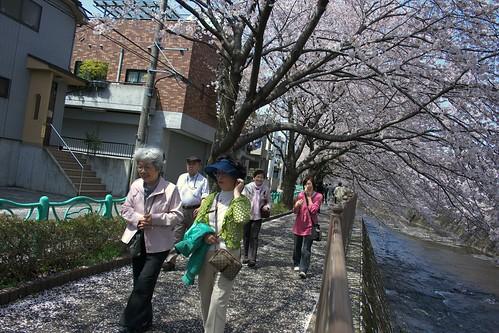 町田樹 画像35