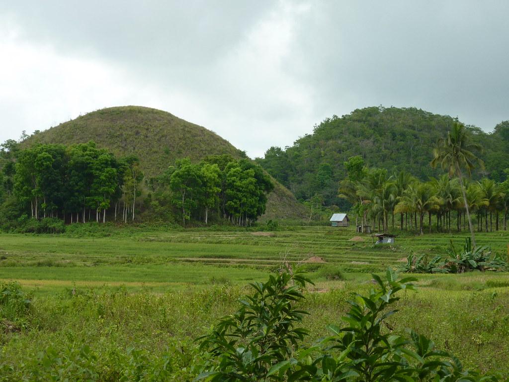 Bohol-Talibon-Chocolate Hills (54)