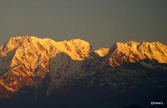 India and Nepal (TRAVEL.L - travel photography) Tags: nepal india temple buddha delhi agra kathmandu gurgaon krishna patan jaipur himalayas bhaktapur pashupatinath rajghat nagarkot mathura swayambhunath yamuna theindiatree fatehpursikri tajmahal agrafort qutbminarcomplex jamamasjid redfort quwwatulislam amberpalace citypalace palaceofthewinds hawamahal thenagarkothills trishulibridge chitwannationalpark stbagmati durbarsquare thehimalayarange baudhastupa kumaripalace kumarighar shivaparvatitemple