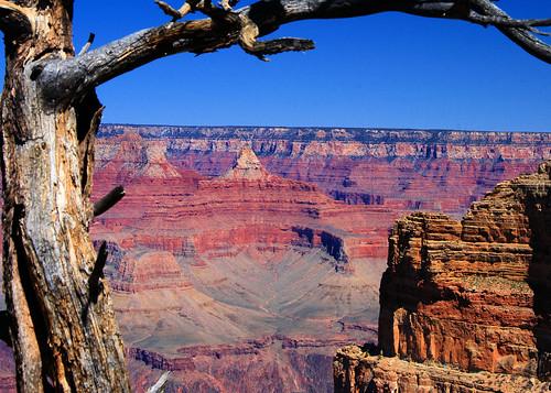 5x7 Grand Canyon IMG_8555