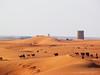 جمال الصحراء (Mohammed.Al-Omar ..) Tags: عين محمد جمال صحراء العمر رأت