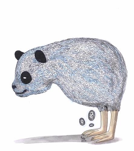 new zealand's panda