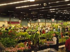 Plant Sale View 1