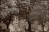 8 - 19 avril 2010 Paris Cimetière de Belleville (melina1965) Tags: trees cemeteries paris tree cemetery grave graveyard sepia nikon îledefrance noiretblanc graveyards façades belleville graves arbres april avril arbre façade 2010 sépia cimetière smörgåsbord 75020 cimetières d80 photoscape 20èmearrondissement leagueofwomenphotographers umbralaward