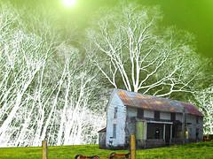 South Of Sodville (rcvernors) Tags: trees white green abandoned farmhouse photoshop fence farm rusty odd dilapidated allrightsreserved rundown fencepost greenyellow oldfarm oldfarmhouse tinroofrusted rcvernors rickchildersdigitalmedia southofsodville