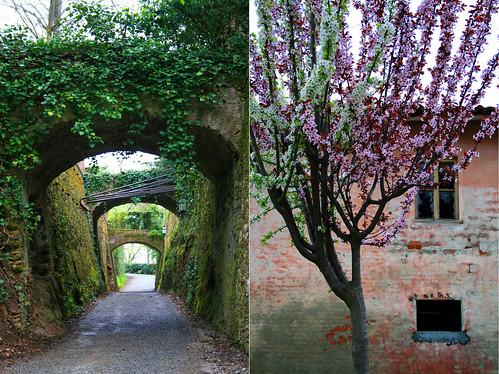 Mostra mercato di fiori al Castello del roccolo a busca  Piemonte italia