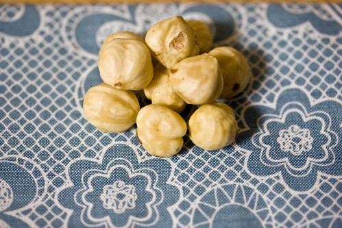 toasted and skinned hazelnuts