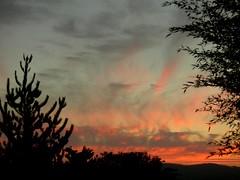 Poesia (Jose Ferreira Jr.) Tags: sunset portugal macieiradecambra
