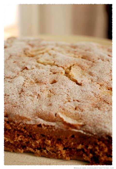 Apple and Jicama Cake© by Haalo