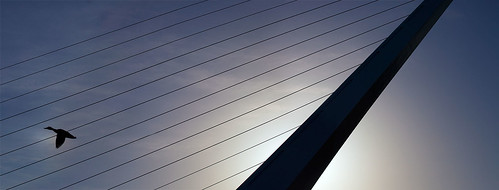 Sundial Bridge - Redding