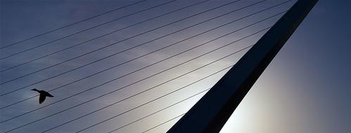 Sundial Bridge - Redding