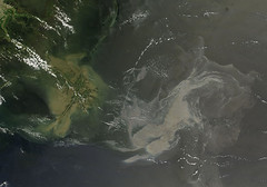 Oil Slick in the Gulf of Mexico May 17th View ...