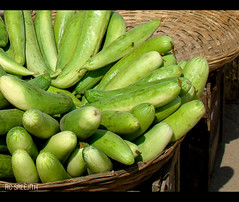 farm fresh.... (RC Sreejith | ) Tags: vegetables cucumber fresh ecofriendly naturalfoods greencucumber sreejithrc rcsreejith