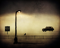 Midnight Taxi (Michael Brooking Photography) Tags: street light bird texture sign fence dark scary nikon streetlight beware cab taxi bees ghost scene textures midnight cabbie layers crow erie ravin d700 michaelbrookingphotography