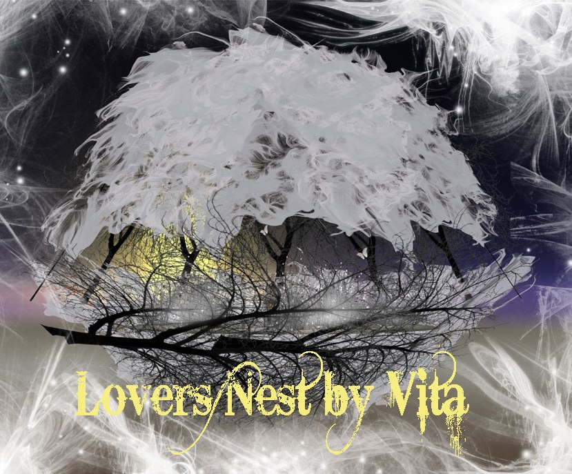 lovers-nest-by-vita-vendor